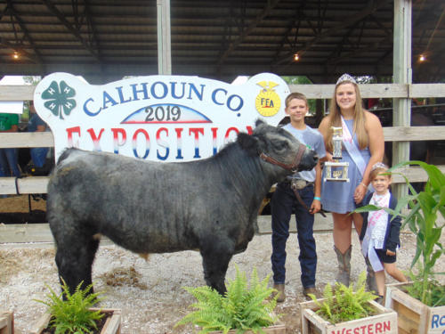 Champion Non Fit Steer Wyatt Anderson