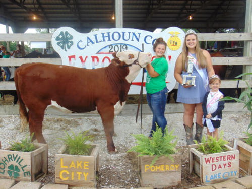 Champion Purebred Breeding Heifer Payton Macke