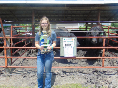 Champion Rate of Gain Steer Feeder Pen Holly McClue