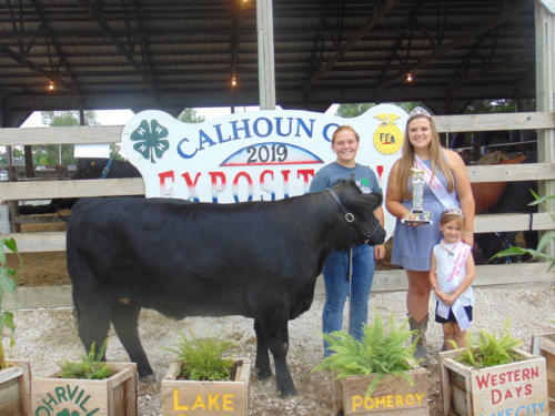 Reserve Champion Commercial Breeding Heifer Sally Musselman