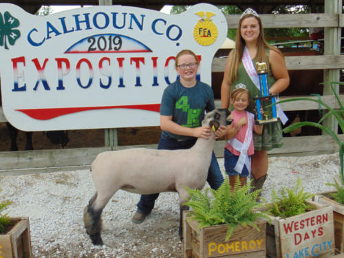 Champion Breeding Ewe Shannon Melody
