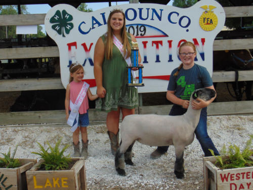 Champion Junior Showmanship Shannon Melody