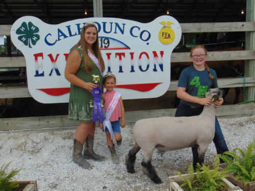 Champion Market Sheep Rate of Gain Shannon Melody