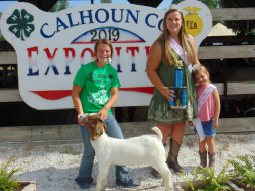 Champion Meat Goat Macy Macke