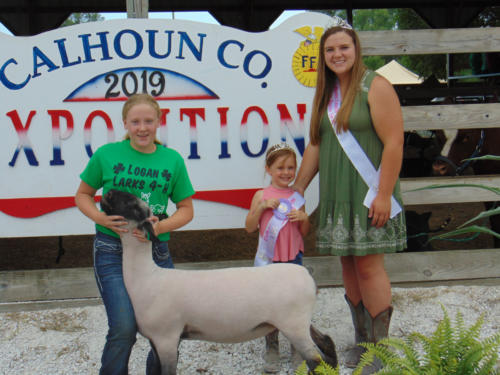 Reserve Champion Junior Showmanship Lily Scheidegger