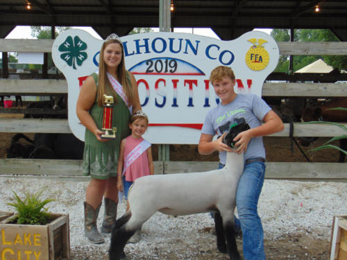 Reserve Champion Market Sheep Waylen Gemberling