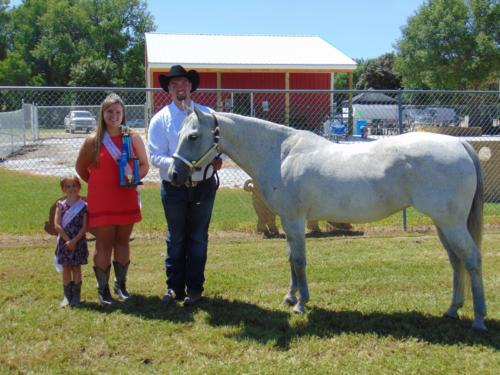 Champion Horse Halter Grant Theesfeld