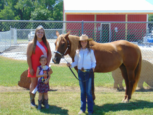 Reserve Champion Horse Halter Breanne Patterson